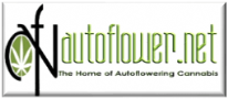 Autoflower.net is an awesome Forum for cannabis growers with great marijuana guides and info about ganja cultivation